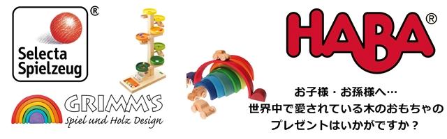 ドイツを中心に、世界中で愛されているおもちゃメーカーの木製玩具を集めました
